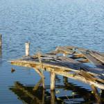 釣り堀の跡(水上池)