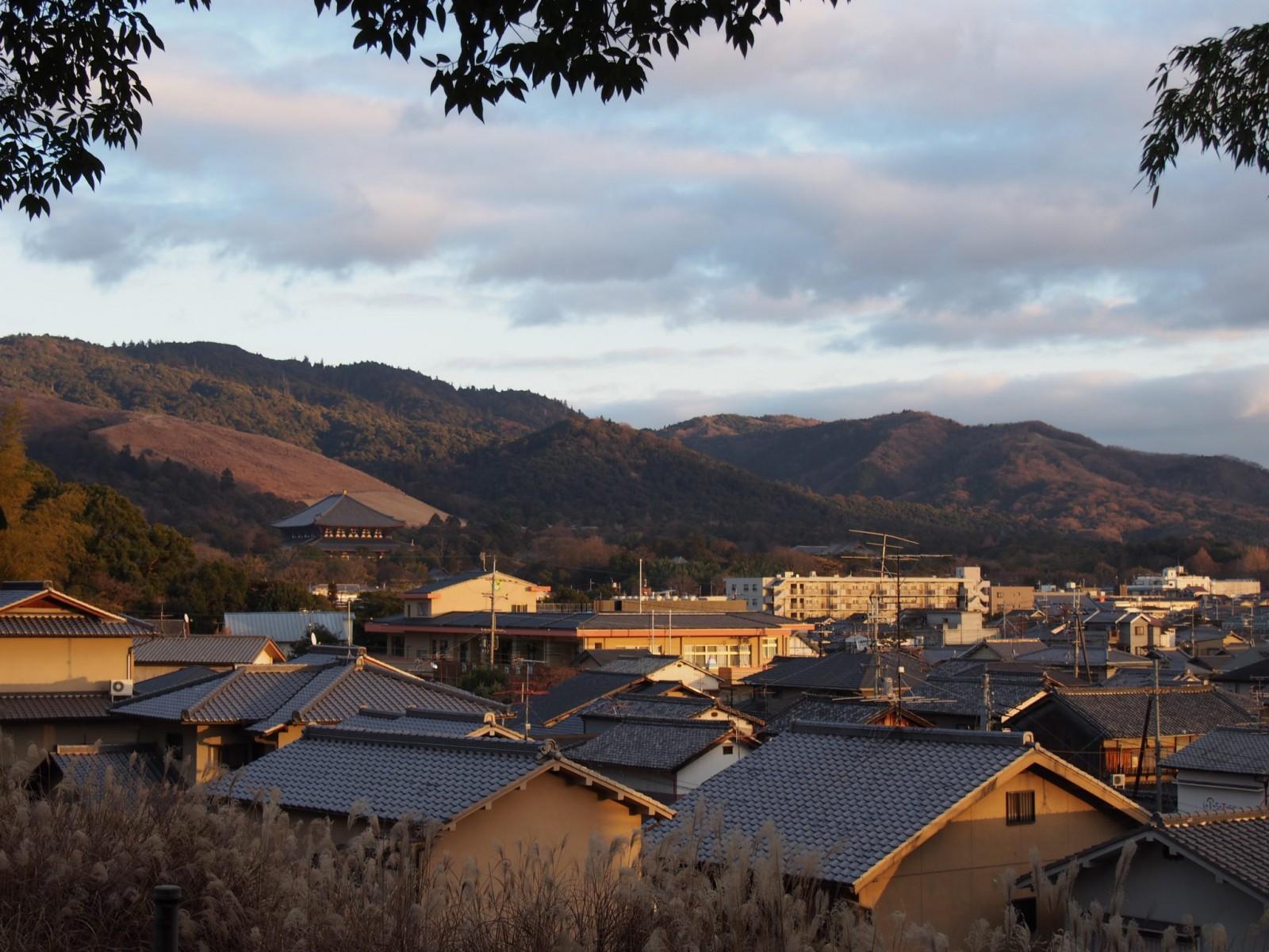 夕方の西安の森から望む奈良の町並み