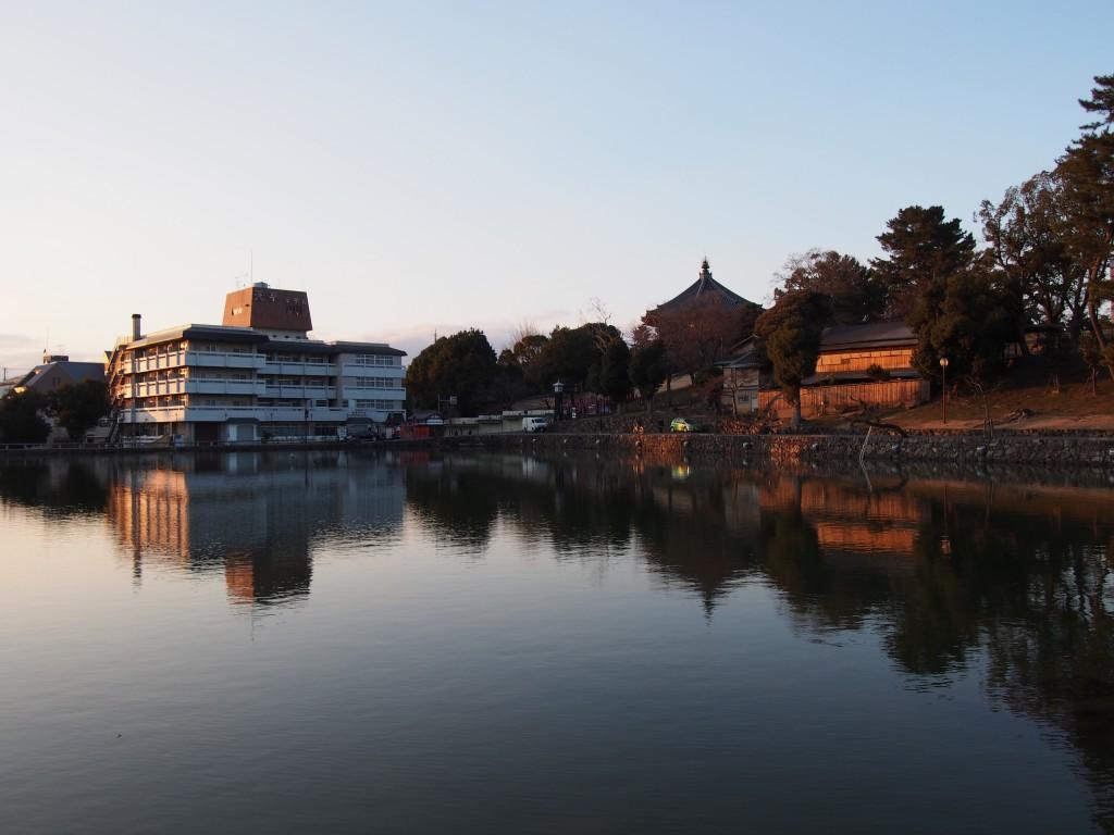 水鏡に南円堂を映す夕方の猿沢池