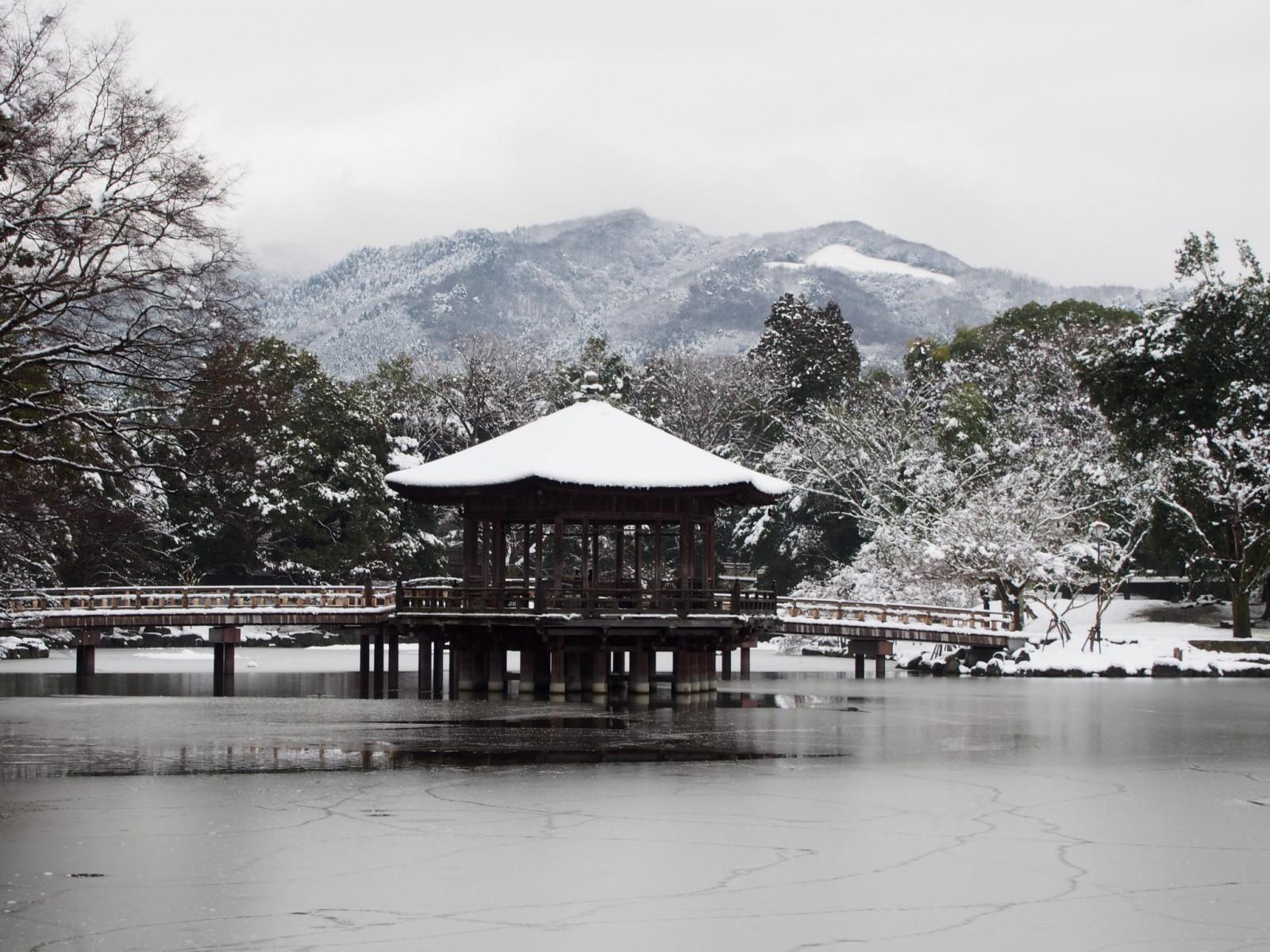 雪景色の浮見堂と凍結した鷺池の風景