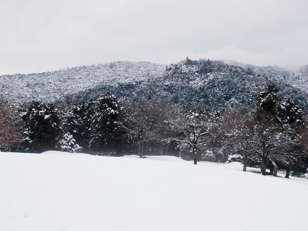 雪景色の御蓋山