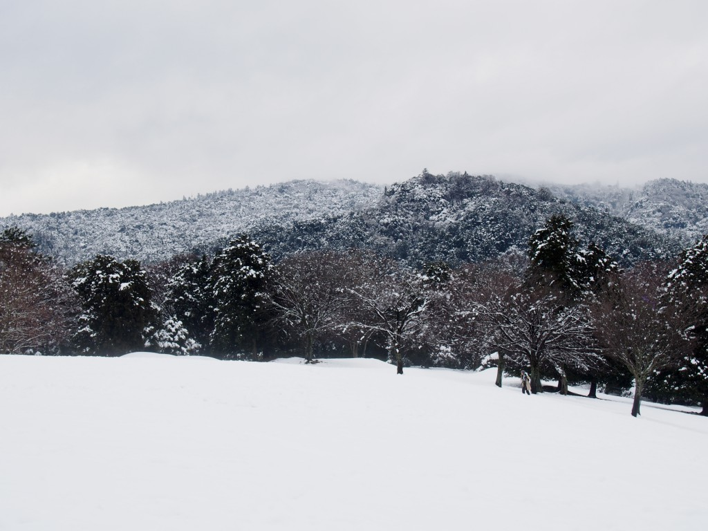 雪の飛火野から春日山を望む