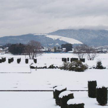 【オフシーズン】奈良の「2月」はどんな感じ?行事イベント・混雑・天候など