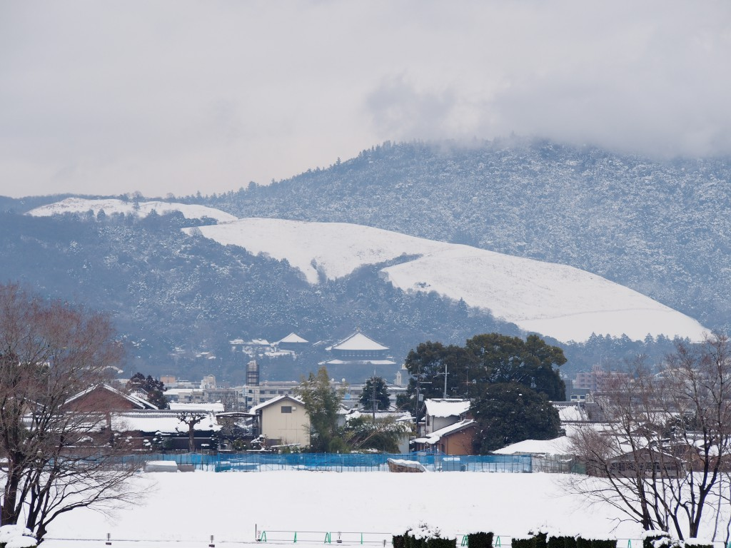 第二次大極殿から雪景色の若草山方面を望む