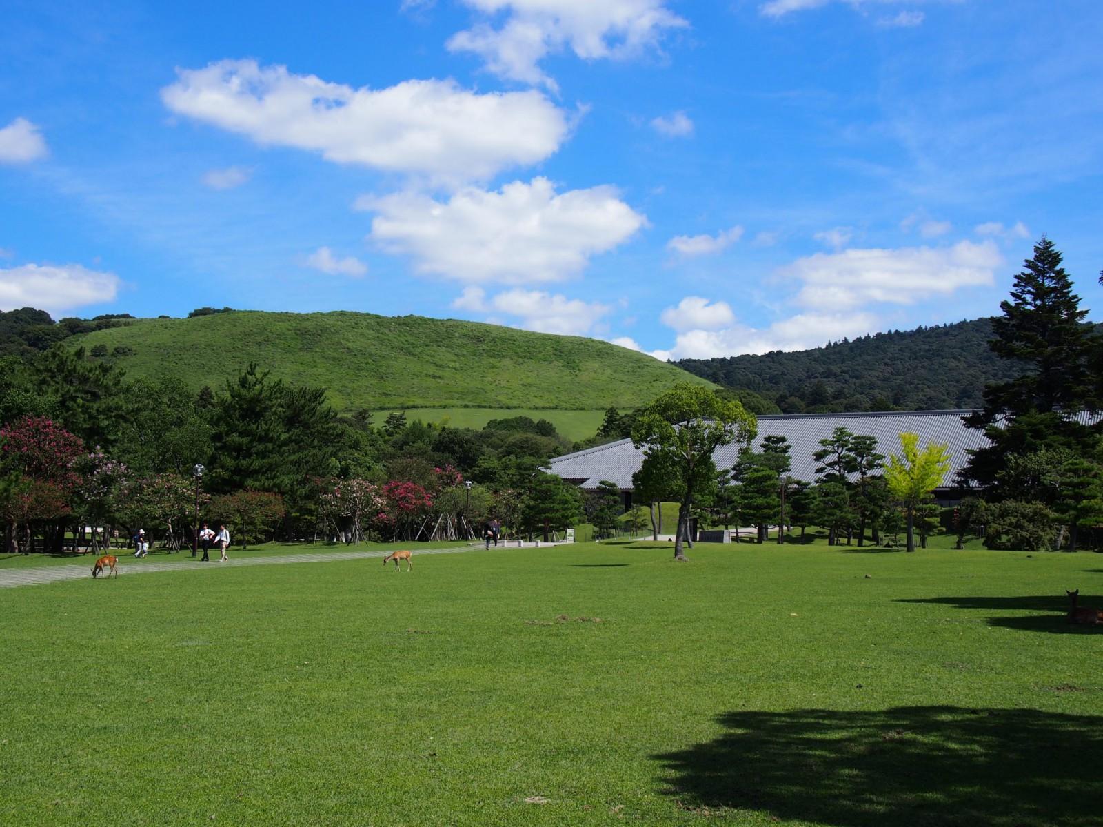 浮雲園地周辺から若草山を望む