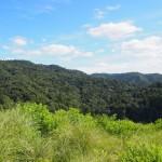 若草山一重目から春日山・高円山への眺望