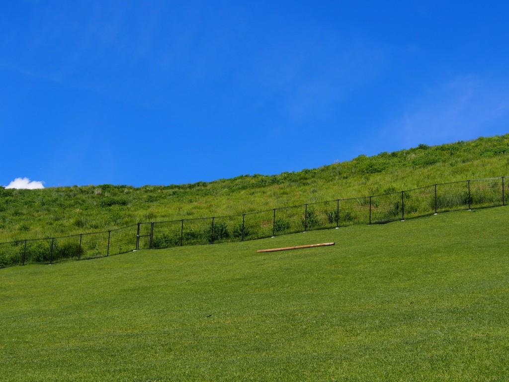 若草山麓の芝生