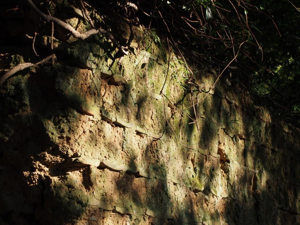 荒池園地の土塀(興福寺関連と推定)