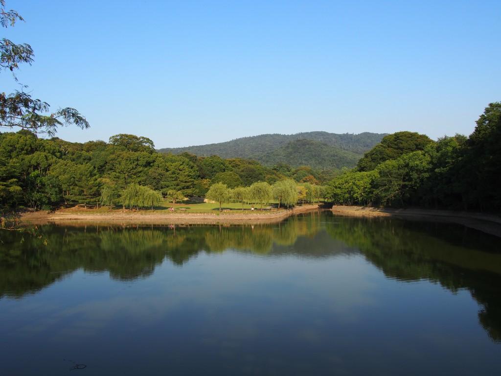 国道沿いから見る荒池と春日山