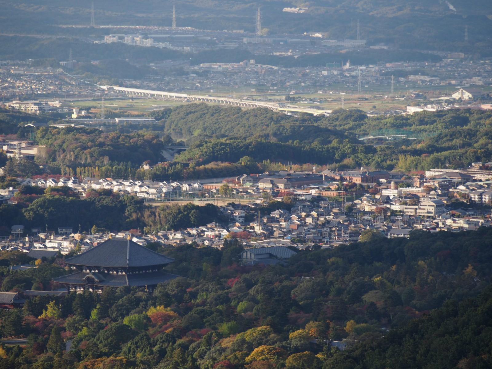 高円山大文字火床から大仏殿・きたまちエリアを望む