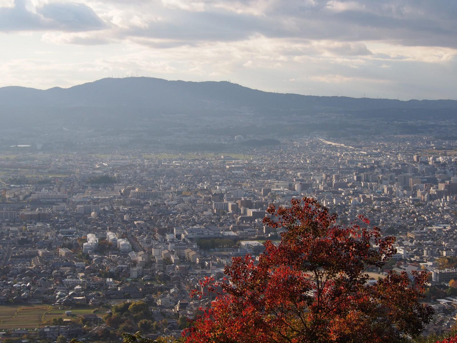 高円山大文字火床から奈良市街地を一望