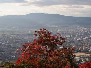 【奈良・高円山】奈良と京都を一望する「大文字火床」ってどんなところ?【大パノラマ】