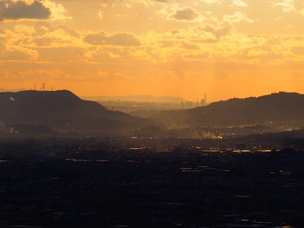 奈良から望むりんくうタワー
