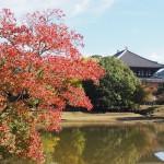 大仏池の秋