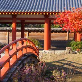 平城京東院庭園