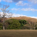 飛火野から若草山を望む