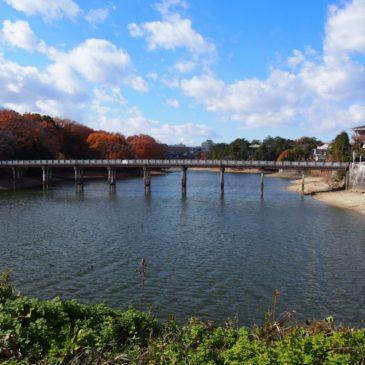 【蛙股池(かえるまたいけ)】日本書紀に記された「日本最古のダム」とも言われる水辺