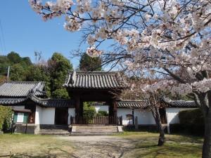 【奈良・佐保路】ひっそりと佇む美しい尼寺「興福院」ってどんなところ?【拝観不可】