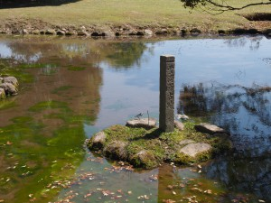 【奈良公園】誰も気づかない小さな水辺「雪消沢古跡」ってどんなところ?【飛火野】