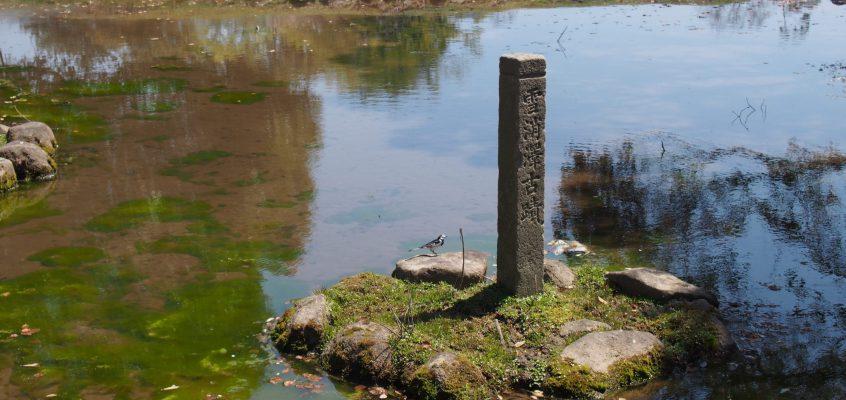 【雪消沢古跡】飛火野の端にある誰も気づかない小さな水辺はかつての「歌枕」