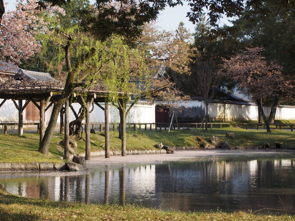【奈良公園】「南都八景」ゆかりの水辺「みとりい池園地」ってどんなところ?みどころを写真でご紹介