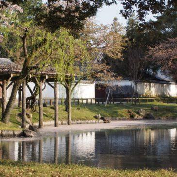 【みとりい池園地】季節ごとの風景が美しい「水辺」の近くにはかつての「南都八景」の面影も