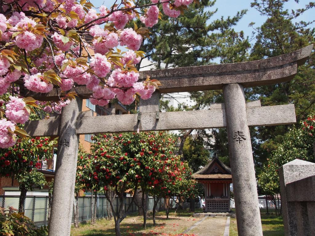 【西大寺石落神社】秘薬を産んだ神を祀る叡尊上人ゆかりの神社