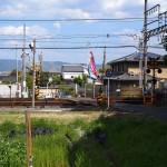 養天満神社付近の風景