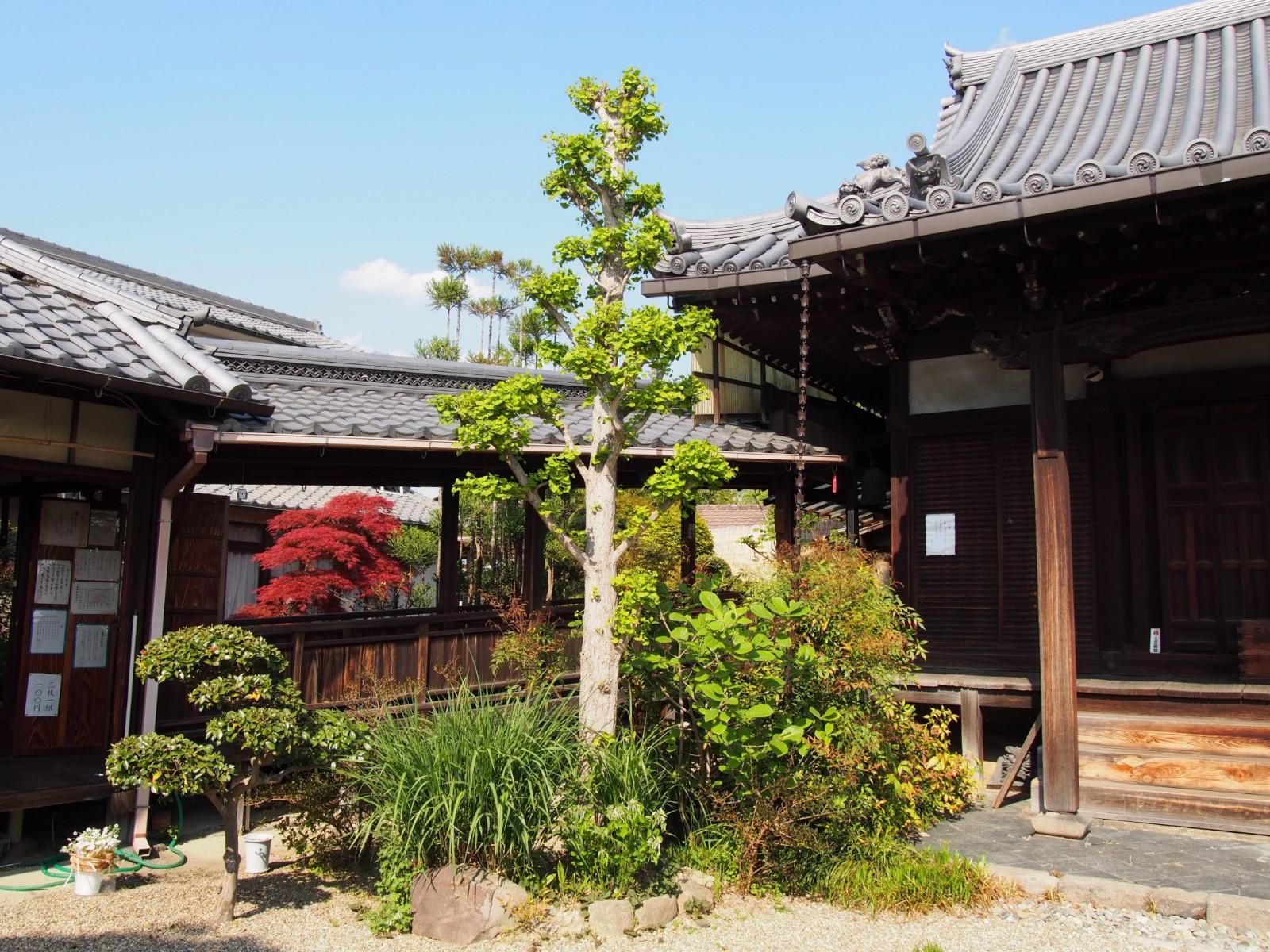 璉珹寺(れんじょうじ)本堂周辺