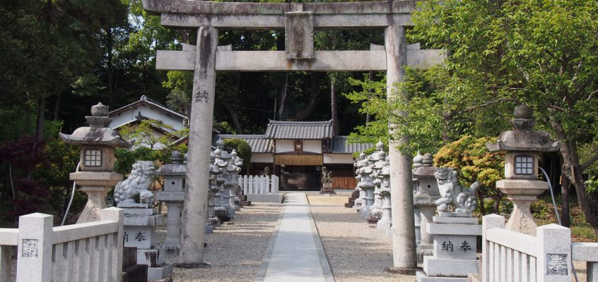 【山上八幡神社】「秀吉ゆかりの杉」のある神社は古墳に囲まれる