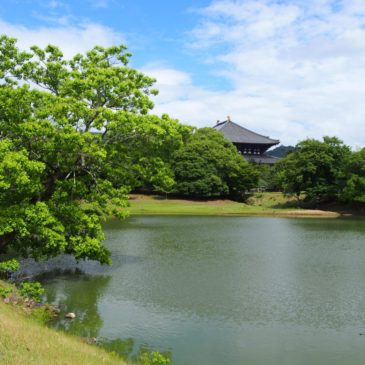 【大仏池】大仏殿を背景にした紅葉・新緑が特に美しい「東大寺境内の絶景スポット」