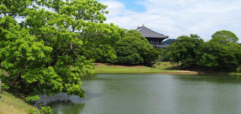 【東大寺】紅葉・新緑が美しい「大仏池」ってどんなところ?季節ごとの写真で解説!