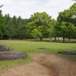 東大寺講堂跡の「礎石」