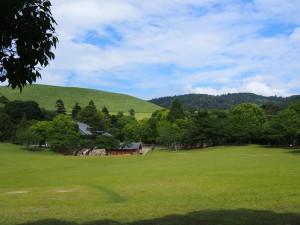 【奈良公園】広々とした芝生が広がる憩いの場「春日野園地・浮雲園地」ってどんなところ?【イベント開催】