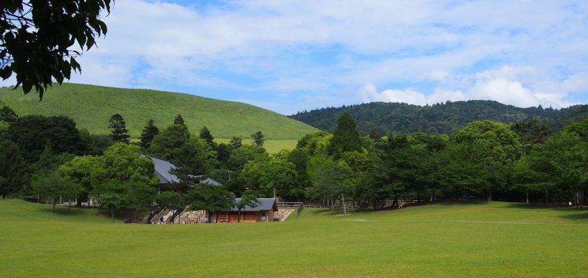 【春日野園地・浮雲園地】広々とした芝生が広がる奈良公園内有数の「憩いの場」