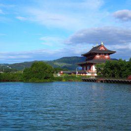 佐紀池から大極殿方面を望む風景