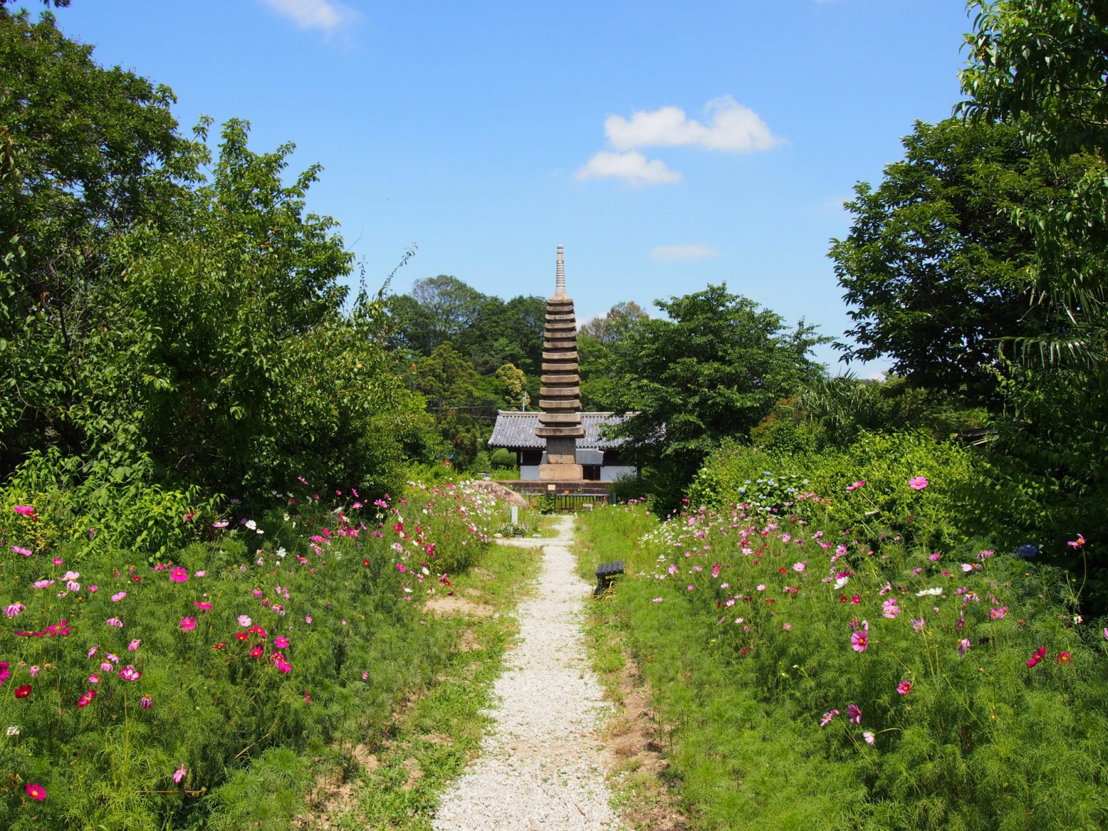 般若寺楼門付近から十三重石宝塔方面への眺め
