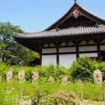 般若寺本堂と石仏