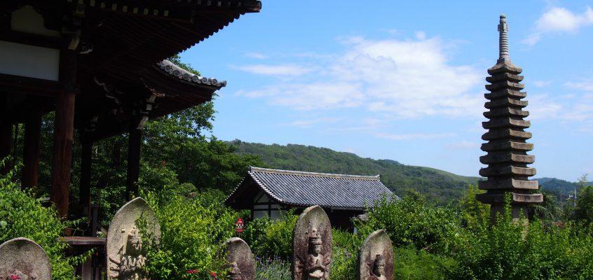 【般若寺】コスモス寺として有名な「きたまち」を代表するお寺