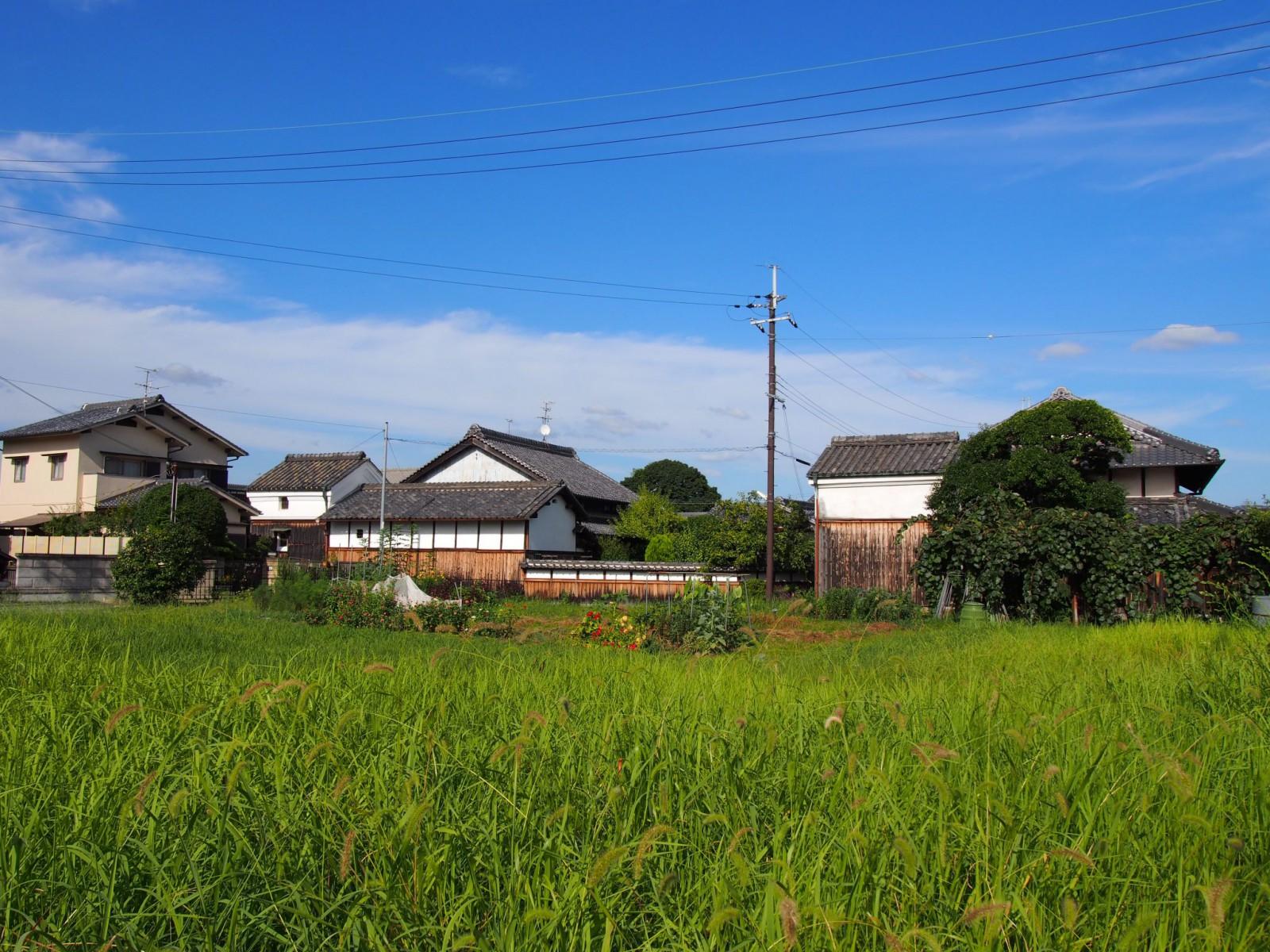 奈良盆地内の典型的「農村」風景を見せる薬師寺周辺の集落