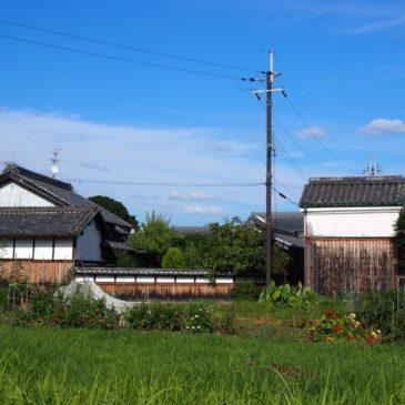 【薬師寺周辺の家並み・田園風景】世界遺産の隣ののどかな農村風景