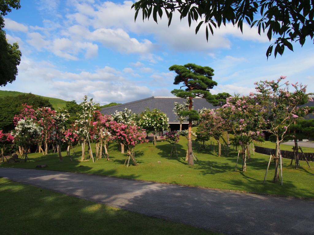 奈良公園の美しいサルスベリ(百日紅)