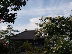 【知っておきたい】奈良・東大寺への交通アクセスの基本・注意点