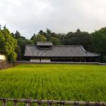 大湯屋とその前に広がる二月堂供田
