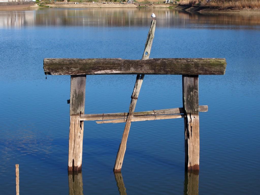 鳥居型の樋(広大寺池)