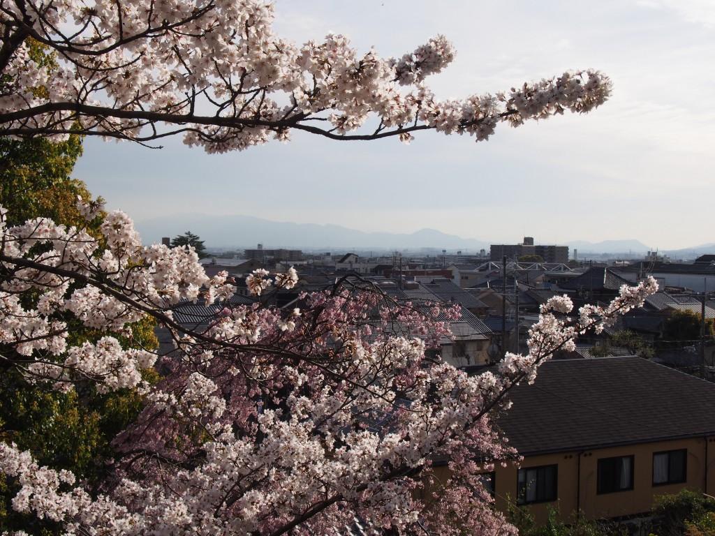 奈良町天神社からの眺め
