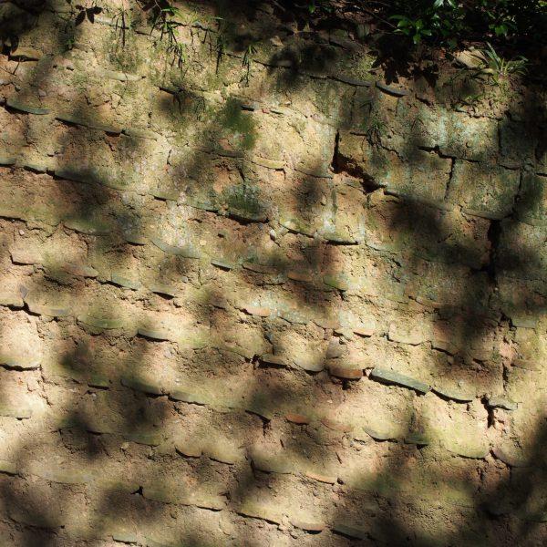 荒池園地の「土塀」