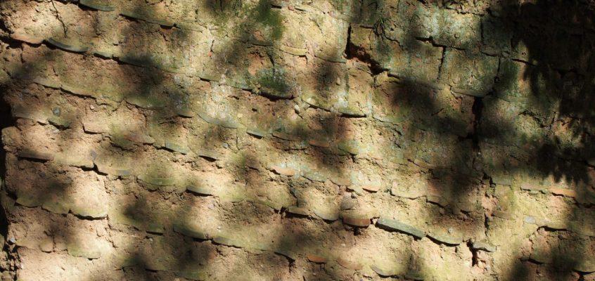 【荒池園地の「土塀」】かつての興福寺塔頭寺院の痕跡とも推定される風化した土塀