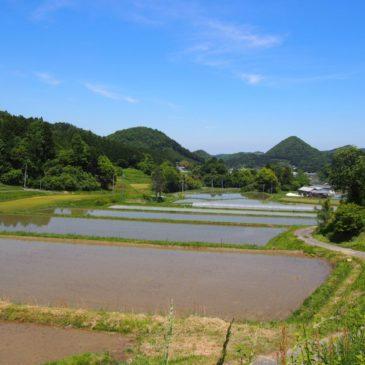 【吐山の農村風景】奈良市内で最も標高が高い農村には「茅葺き屋根」も未だ残される