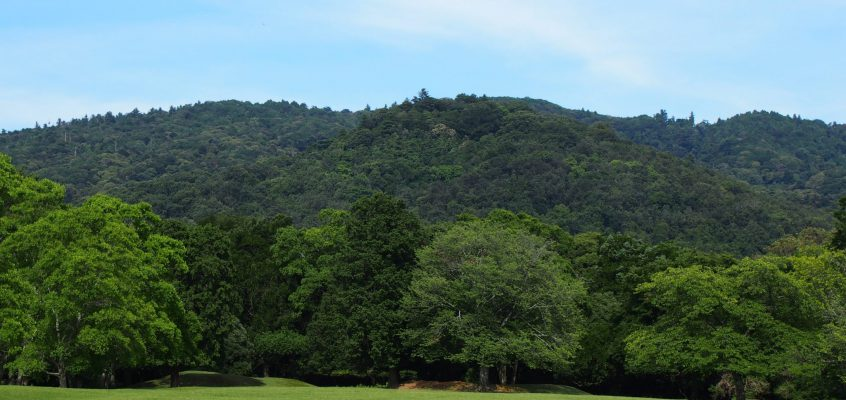 【御蓋山】入山不可の「神域」は春日大社の創建神話の舞台